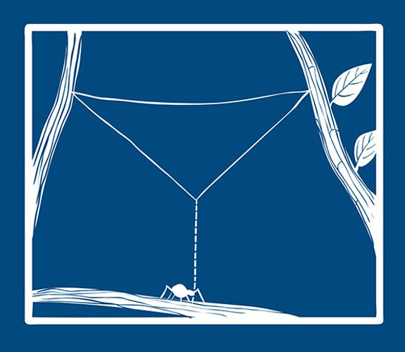 Blueprint-spider-step-4