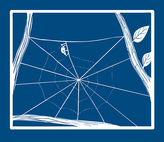 Blueprint-spider-step-5