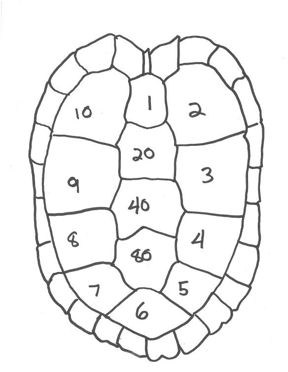 hatchling-marking-blank