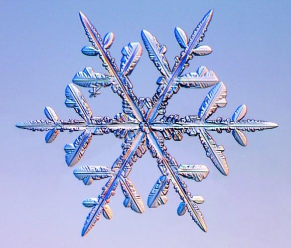 snow-crystal1