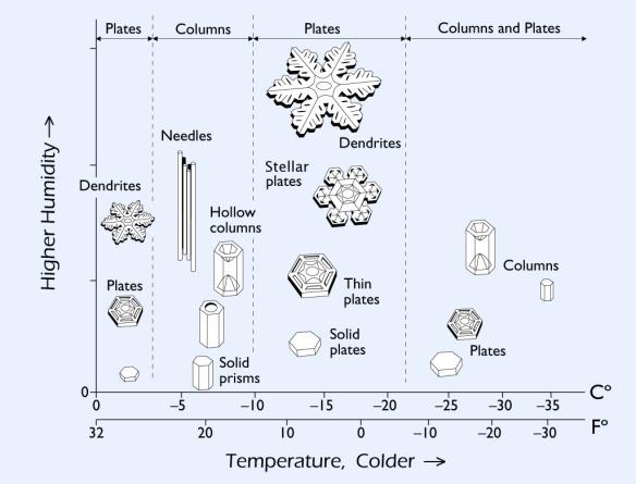snowflake%20morphology2