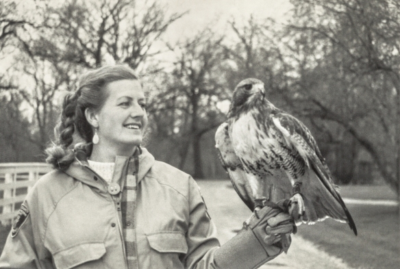 Director of Education Nan Buckardt with the hawk in 1989. Photo © Lake County Forest Preserves.