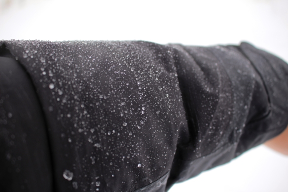 The author's coat sleeve encrusted with freezing rain. Photo © Lake County Forest Preserves.
