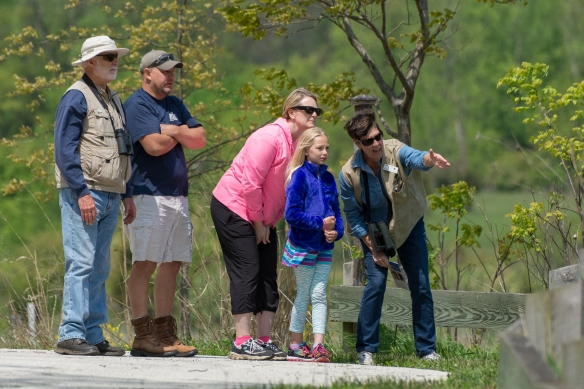 You can participate in Birdwatching Hotspots programs this spring and summer across Lake County. Photo © Tim Elliott.