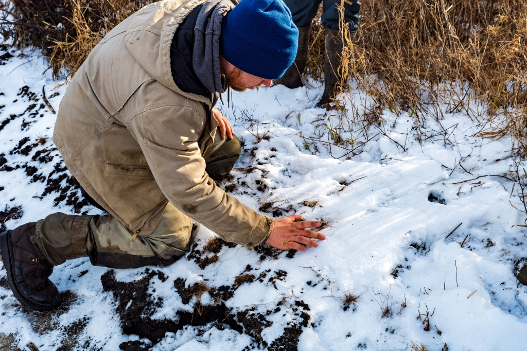 Devin Hoffer, a master's degree student with the Southern Illinois University Cooperative Wildlife Research Lab, examines a mink slide in the snow. Photo © John D. Kavc.