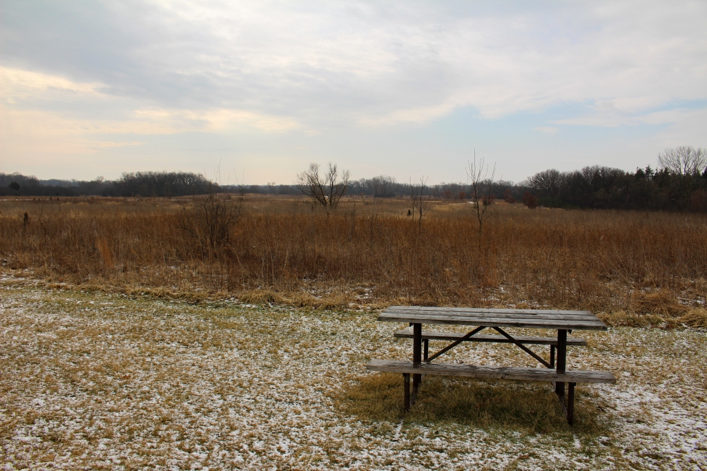 The view looking south from the parking lot at Sun Lake. Photo © Lake County Forest Preserves.