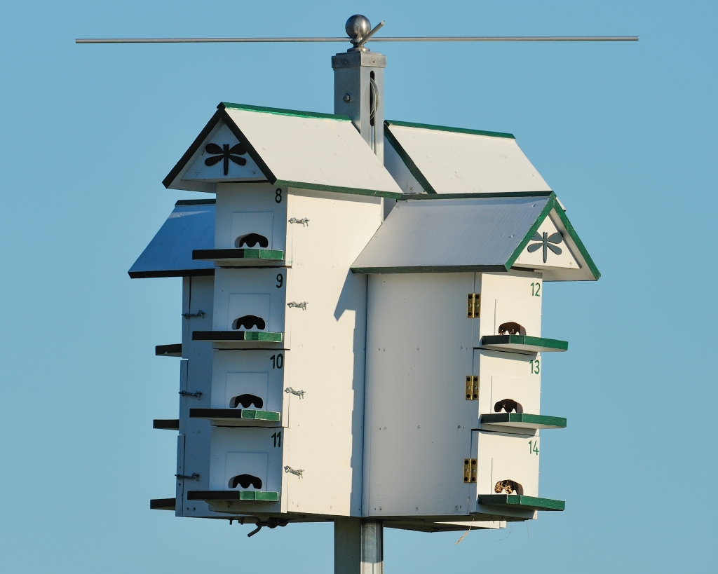 A purple martin house at Nippersink in Round Lake. Photo © Phil Hauck.
