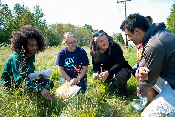 Dr. Julie Etterson (third from left) collecting seeds with students. Photo © Julie Etterson.