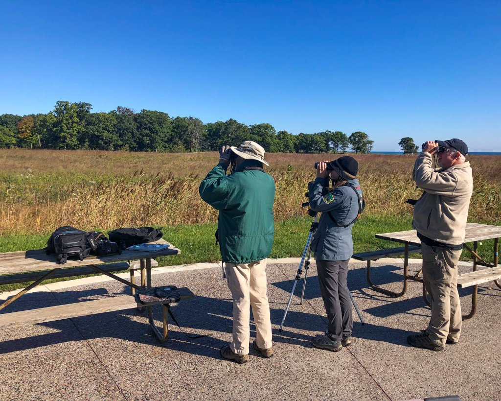Volunteers watch for birds migrating along the Lake Michigan flyway at Fort Sheridan in Lake Forest. Photo © Michael Haug.